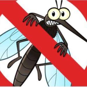 036驅蚊驅蟲系列 ไล่แมลง